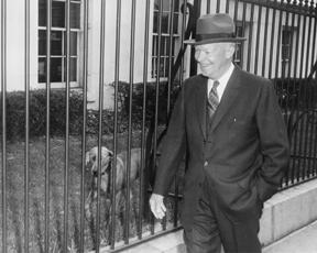 March 11, 1959--President Eisenhower and his dog Heidi walk along the White House fence as Eisenhower returns from a press conference. [72-3010-2]