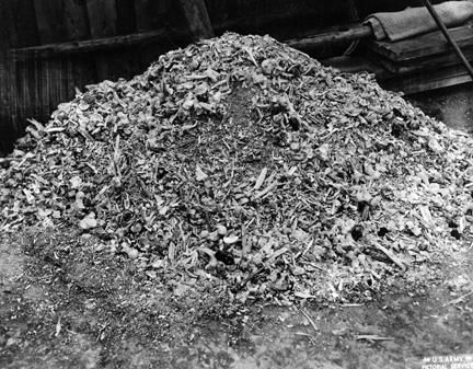 April 14, 1945 - Pile of ashes and bones found by U.S. soldiers at Buchenwald concentration camp